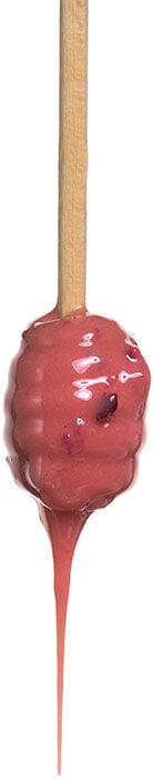 Крем-мёд Медолюбов с черноплодной рябиной