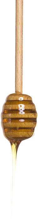 Мёд Медолюбов горный тянь-шань