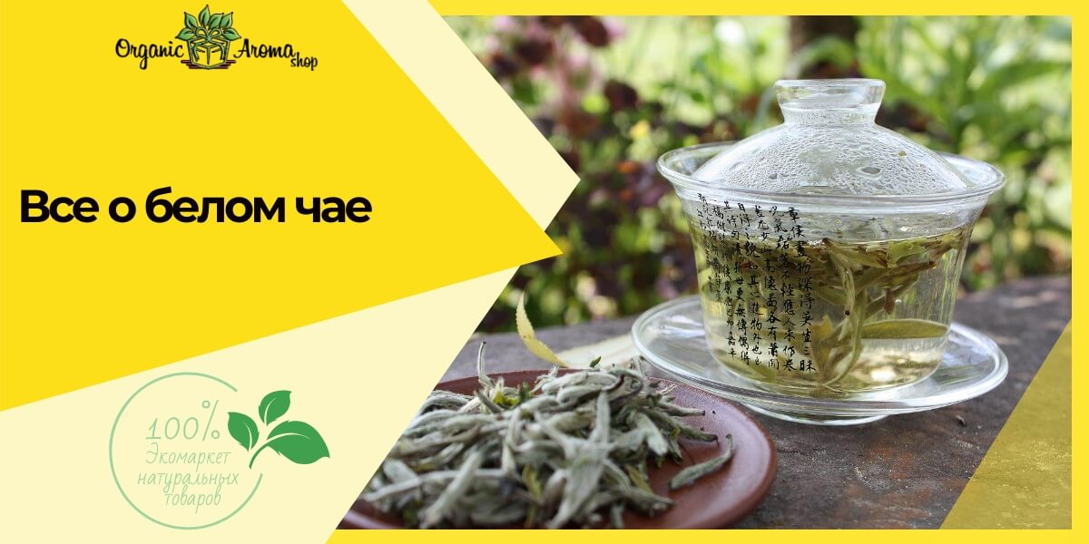 Белый чай отзывы